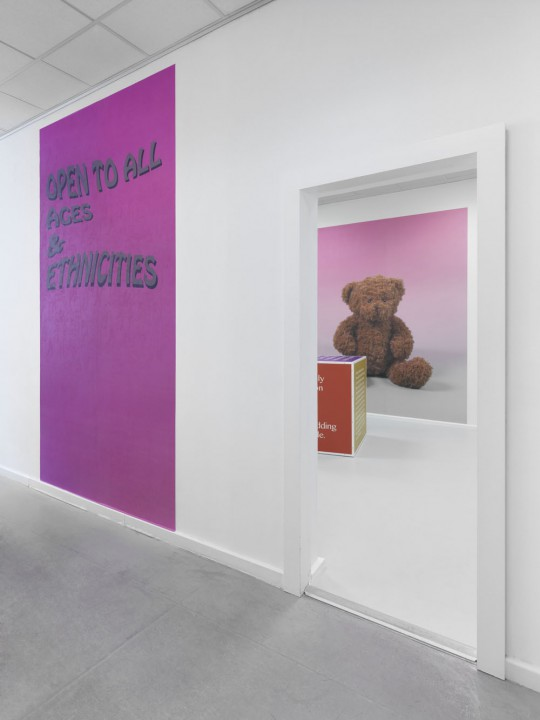 Takuji Kogo, John Miller, Open to All Ages and Ethnicities, exhibition view Neuer Berliner Kunstverein, 2015, photo: Jens Ziehe
