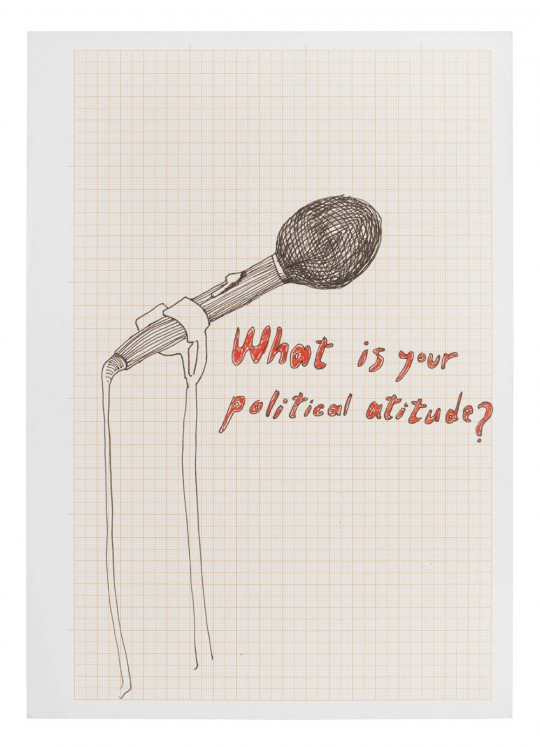 What is your political attitude?